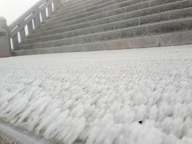Tuyết rơi cả đêm, sáng nay ĐỈNH FANSIPAN TRẮNG XÓA nhìn đẹp như Tây