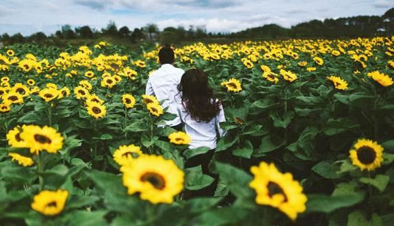 thong tin cac vuon hoa dep o da lat