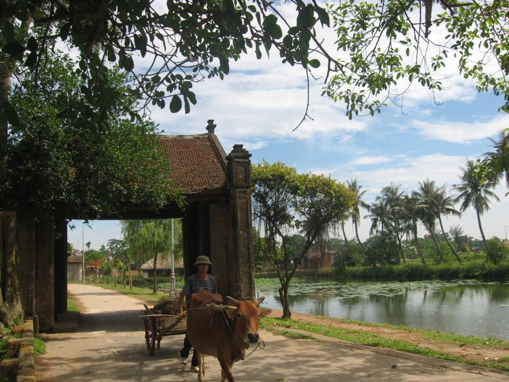 Địa chỉ Làng Cổ Đường Lâm nằm ở đâu | Viet Fun Travel
