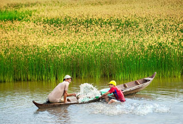 Image result for Dụ lịch miền tây sông nước