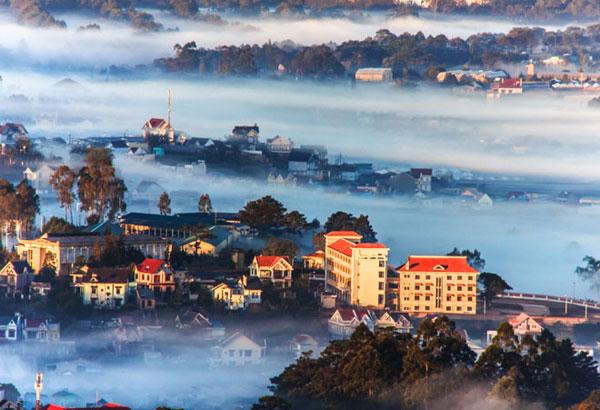 Đà Lạt sáng sớm, lung linh huyền ảo trong màn sương giăng phủ