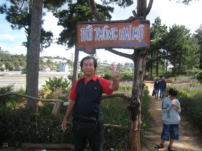 Cảnh chụp lối vào đồi thông hai mộ