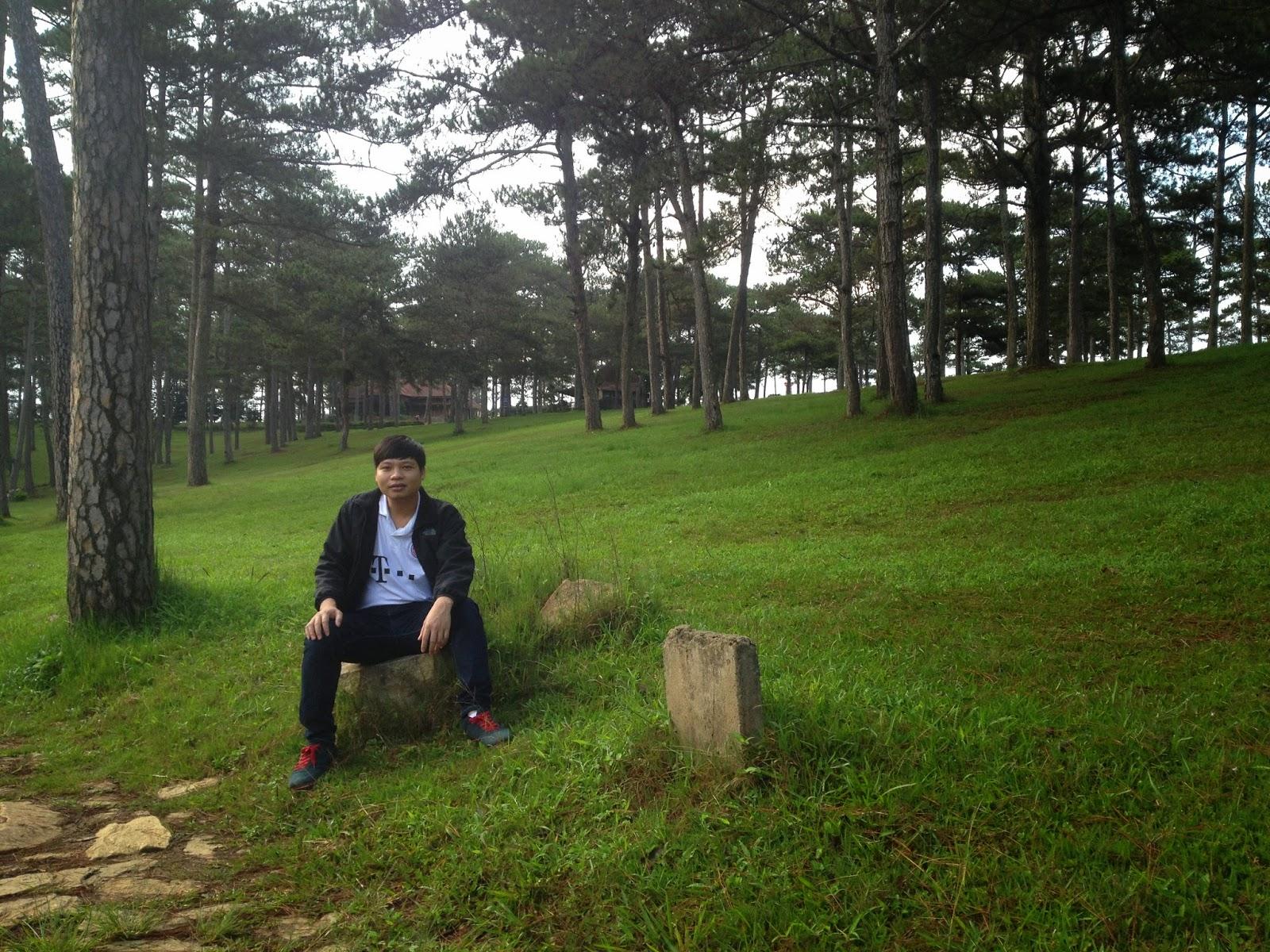 Quang cảnh xung quanh Đồi thông hai mộ