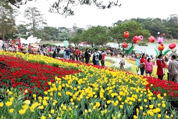 Vườn hoa Đà Lạt là vương quốc của các loại hoa