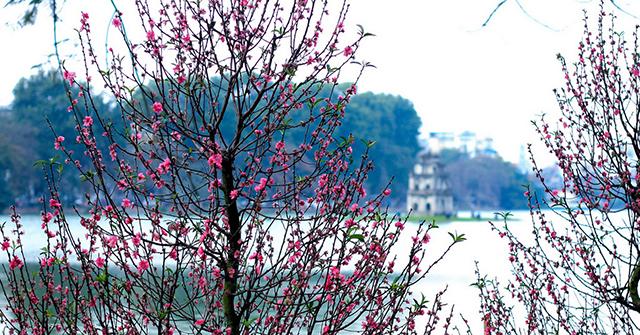 Description: Image result for hà nội mùa xuân
