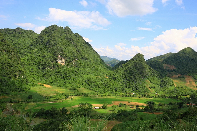 Description: Image result for ba vì national park