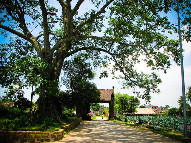 Description: Image result for làng cổ đường lâm